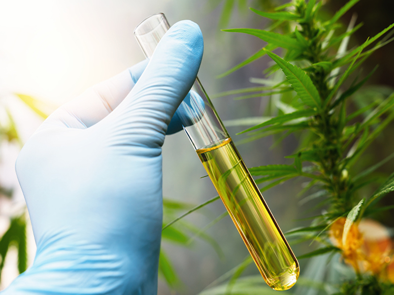 THC Remediation Оverview