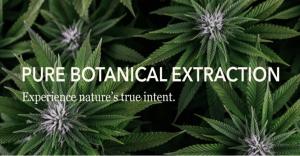 Pure Botanical Extraction (PBX)